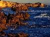 australia, nuovo mondo, sciperte, natura, mare, incontaminato