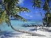 viaggio, tour, mare, vacanze, spiaggie,