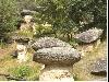 erosione, colonne, pietre, sassi, segni, simboli