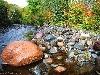 fiumi acqua vita pesci corrente affluenti
