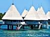 isola viaggi visite mare tropici natale