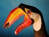 mani colori disegni decoro animali