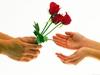 rose, rosse, simbolo, amore, passione, canzone