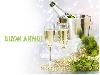 augurio, 2013, maya, vita, amore, serenita, speranza, elezioni, tasse